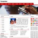 翻译公司网站6016
