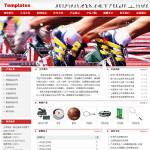 体育用品公司网站6026