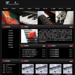 乐器制造企业网站5013